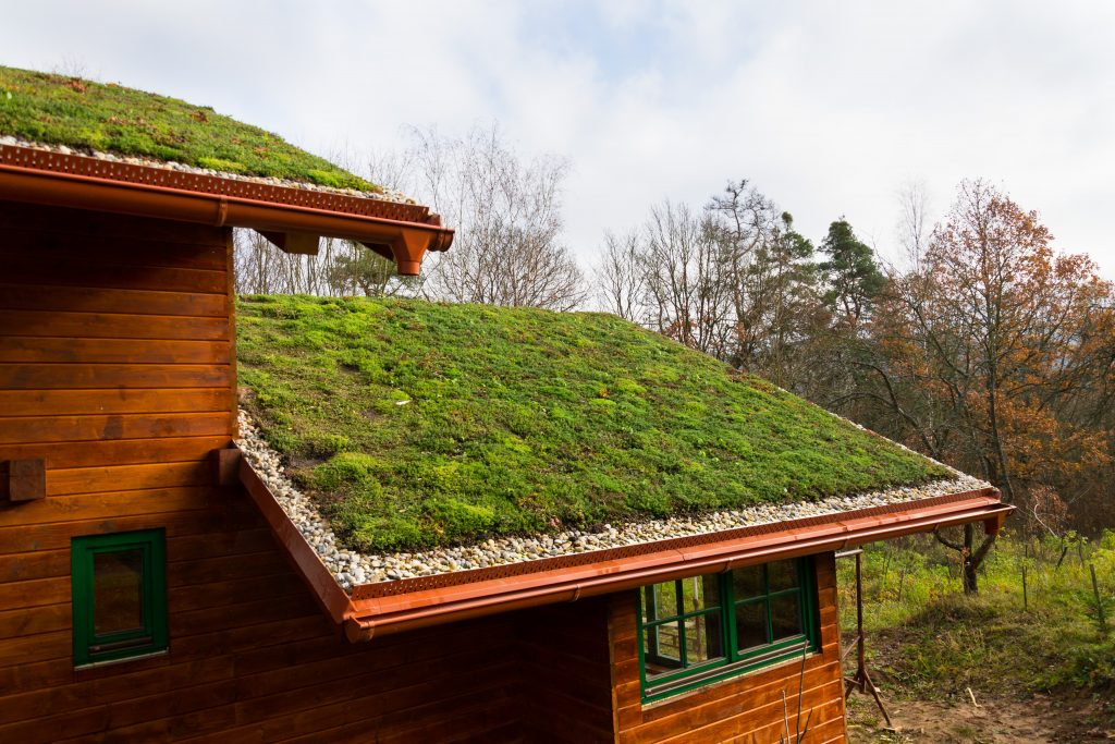 how often should you replace green roofing