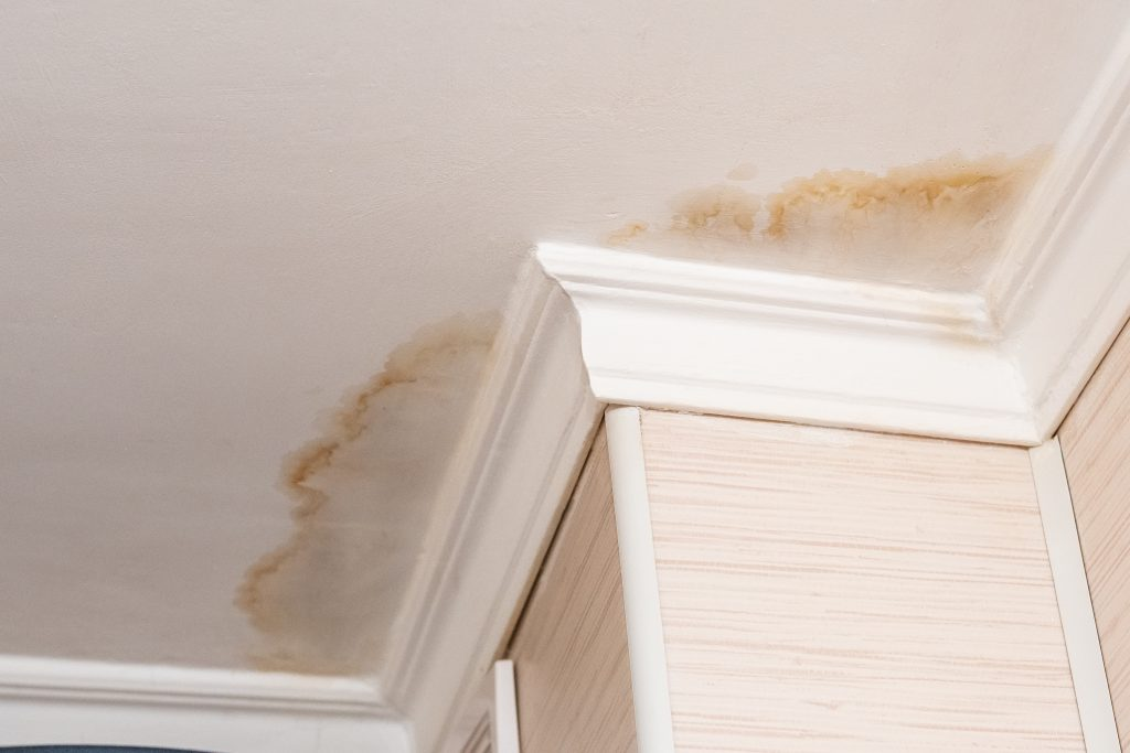 water stains on ceiling due to roof damage