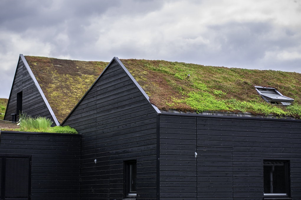 commercial roofing systems: green roof